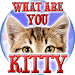 Test: What are you Kitty - Prank