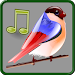 Download Birds Sounds Relax and Sleep 5.0.1-40027 APK