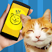 Download Cat Phrasebook Simulator 1.0 APK