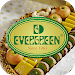 Download Evergreen 1.0 APK
