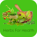Download Herbs For Health 1.6 APK