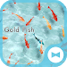Stylish Wallpaper Gold Fish Theme