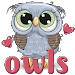 WAStickerApps - Owls