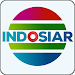 tv indonesia - indosiar tv